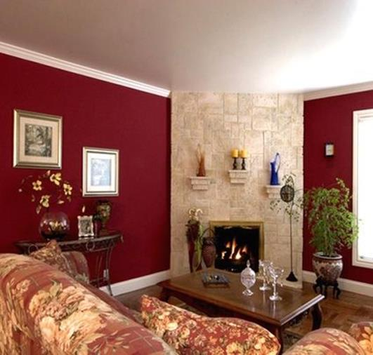 Living Room Accent Wall Color Combinations 4 Decor Renewal